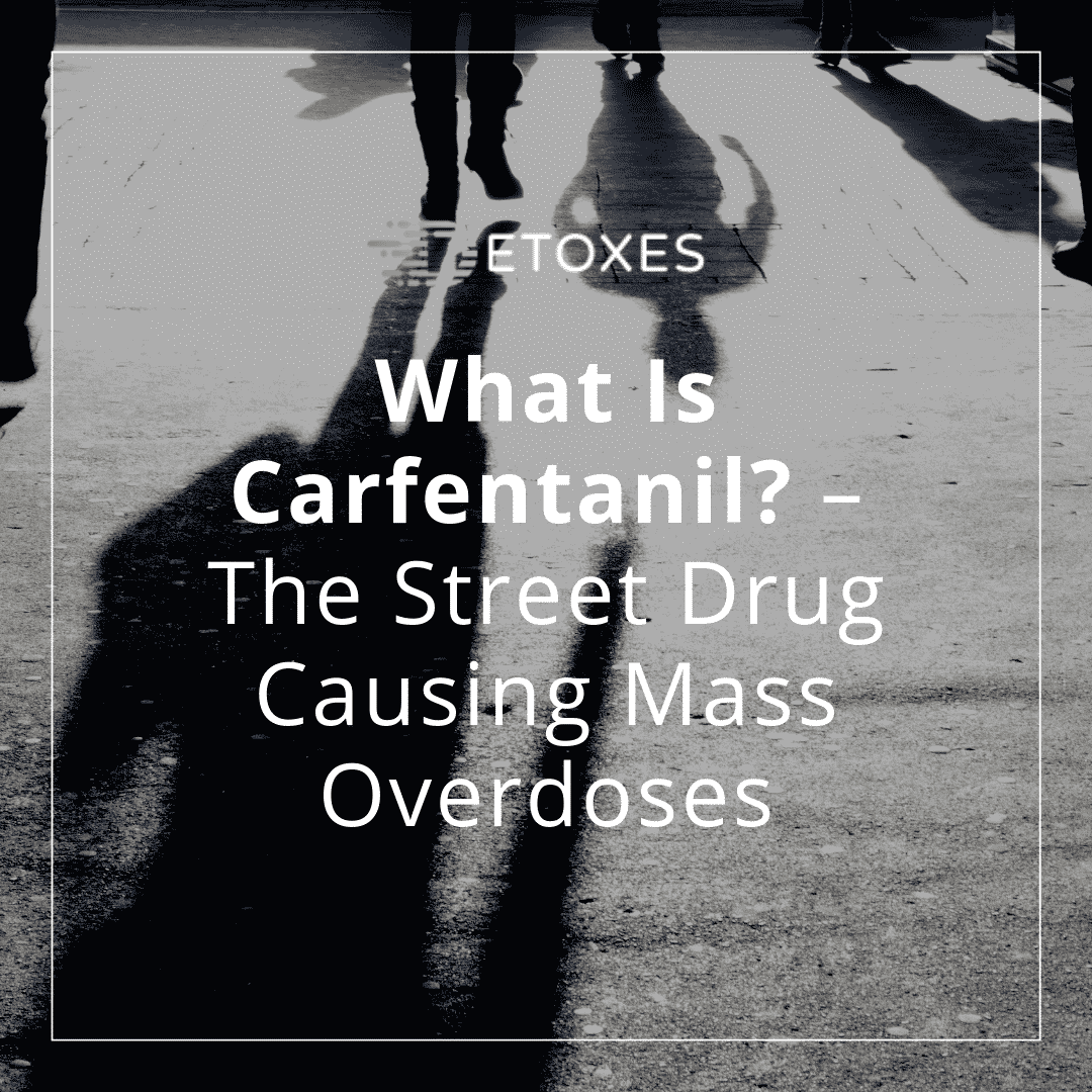 The Dangers of Carfentanil: The Street Drug Causing Mass Overdoses